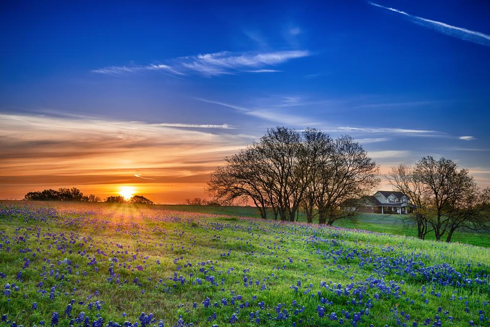 mansfield texas